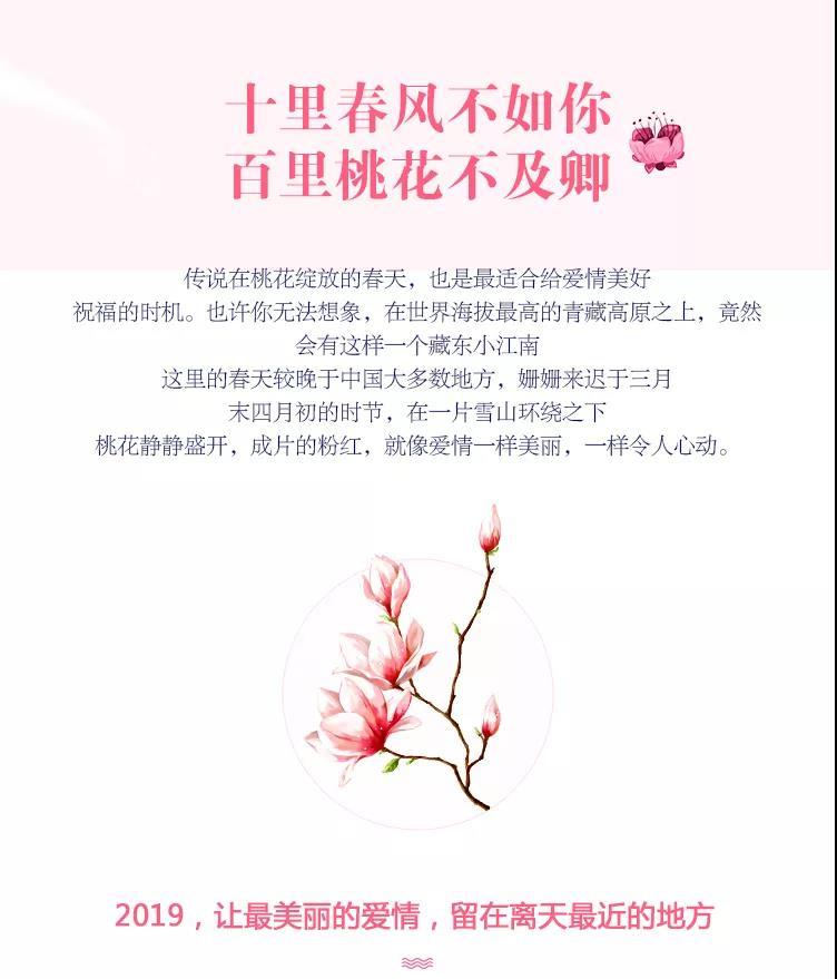 2019年3月23—31日拼西藏雪域桃花拉萨林芝9天行2.jpg